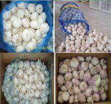 LW-2013 crops fresh garlic 4.5cm-6.0cm