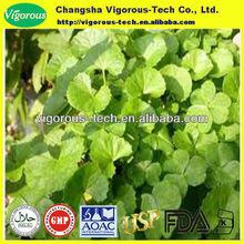 10%-40%Asiaticoside centella asiatica powder