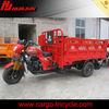 3 wheel motor de motocicleta