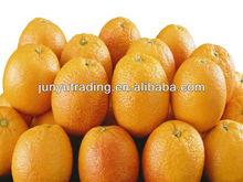 2013 Popular Family Use Orange Juice Machine/Orange Juice Squeezing Machine/Fresh Squeezed Orange