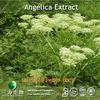 Angelica Extract 1% Ligustilide4431-01-0