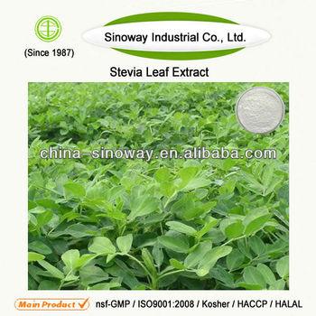 Natural Organic/FDA/GRASS Stevia Extract Steviol Glycosides