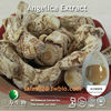 1% Ligustilide of Angelica Extract in Dark brown powder