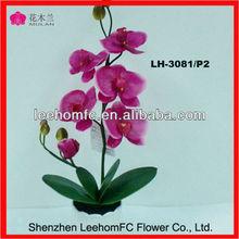 Verdadeira procurando secas arranjos florais toque fresco