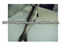 High Quality Seafood Product Natural Frozen Cobia Fish