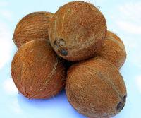 SAMAL, DAVAO CITY, PHILIPPINE MADE COCONUT VERY CHEAP PRICE