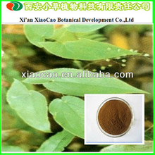 Sexual Enhancement Products High Quality Epimedium Grandiflorum Extract Icariin 20%~98%