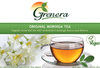 USDA certified organic moringa tea