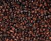 Coffee bean Raw / Roasted / Powder