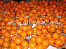 Fresh Fruites