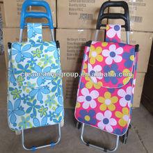 Leisure supermarket shopping cart/bag,