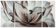 flower painting oil painting lotus group