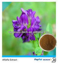 100% Natural Alfalfa Extract/alfalfa extract/alfalfa bales/alfalfa