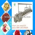 Deshidratador de microondas/frutas de equipos de secado/secador de microondas