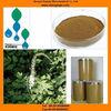 Kosher certificate Black cohosh extract powder manufacturer