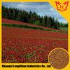 ISO,Halal Certificate Red Clover Extract Isoflavones HPLC 8%,10%,20%