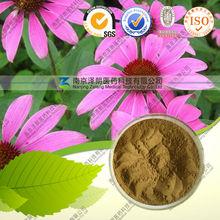 Good Quality Echinacea Purpurea Extract,.Polyphenols 4%;Cichoric Acid 1%,2%,3%,
