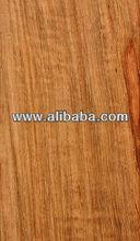 Kiaat/Mukwa/Pterocarpus angolensis