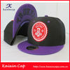 New]2013 new style snapback hat,custom embroidered snapback hats wholesale