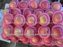 China Supplier/Fruit Plastic Cheap Netting