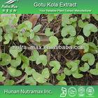 100% Natural Gotu Kola Extract Total Triterpenoid glycosides