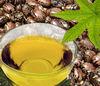 Castor Oil 100% Pure & Natural