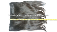 Best on Sale Vietnam Straight Single Drawn Weft Hair With Glue