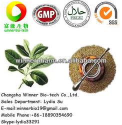 Supply Yerba Mate Extract,25% polyphenol; 4:1, 10:1, 20:1