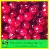 Frozen Cranberries For Sale