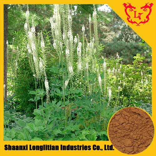 GMP Product Black Cohosh Root Extract 4:1,10:1