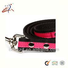 ribbon for dog leash