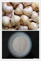 Natural Garlic extract powder