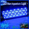 led aquarium plant lighting hot water aquarium freshwater fish for sale