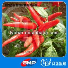 Top Quality Capsicum Extract Capsicum Oleoresin