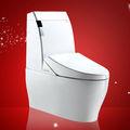 Meubles à la maison une pièce intelligent. une toilette pièce de réparation