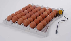 Incubator - egg turning system