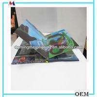 paper childrens pallet of books/ Sea Aquarium shows of books image