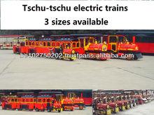 Electric Kids Train