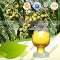 De alta calidad de berberina clorhidrato 85% hplc