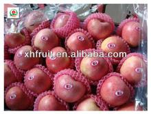 Sweet qinguan apples