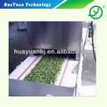 La máquina del túnel/vegetales y frutas secador/deshidratador de vegetales