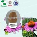 Cichoric ácido 2% 4% extrato da erva echinacea hplc de xi'an honson bio