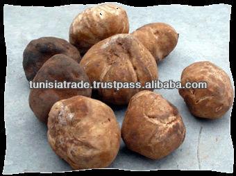 Truffles White/Black from Tunisia desert