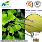 herbal extract ginkgo biloba supplement