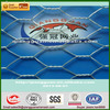 hexagonal wire mesh(pvc &galvanized) with high quality and good price
