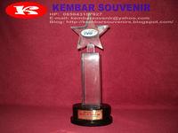fiber resin kenang-kenangan, souvenir fiber bintang, souvenir fiber kejuaraan, piala trophy kejuaraan resmi
