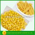 alimentos enlatados conservas de maíz dulce en latas 340g