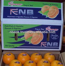 Kinnow Mandarin Tangerine Orange Citrus fruit from Pakistan