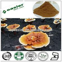 Direct manufacturer supply 100% natural reishi mushroom extract