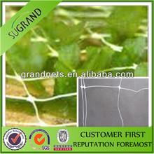 cheap, Plant Support Net , Pea&bean Netting